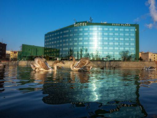 8. Hotel HP Park Plaza